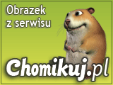 ruchome napisy - ImagePreview.aspx4.png